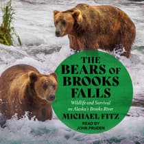 The Bears of Brooks Falls by Michael Fitz audiobook