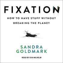 Fixation by Sandra Goldmark audiobook