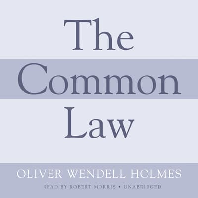 The Common Law by Oliver Wendell Holmes audiobook