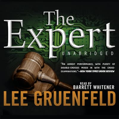 The Expert by Lee Gruenfeld audiobook