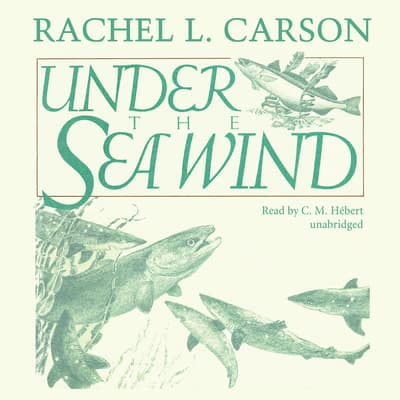 Under the Sea Wind by Rachel L. Carson audiobook