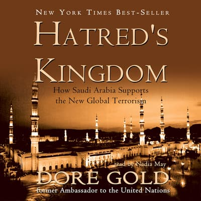 Hatred's Kingdom by Dore Gold audiobook
