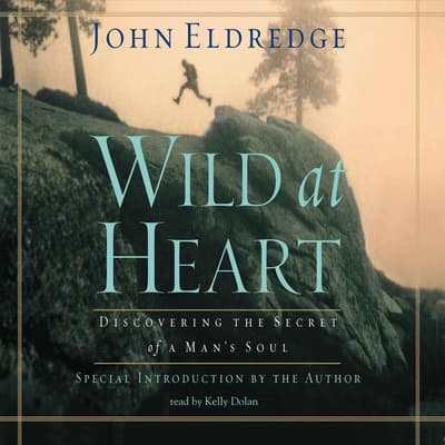 Wild at Heart by John Eldredge audiobook