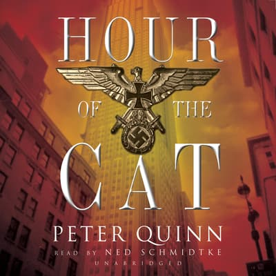Hour of the Cat by Peter Quinn audiobook