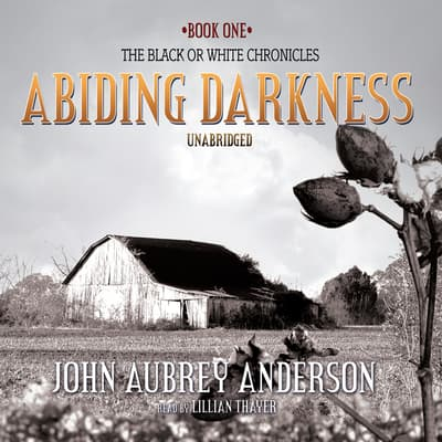 Abiding Darkness by John Aubrey Anderson audiobook