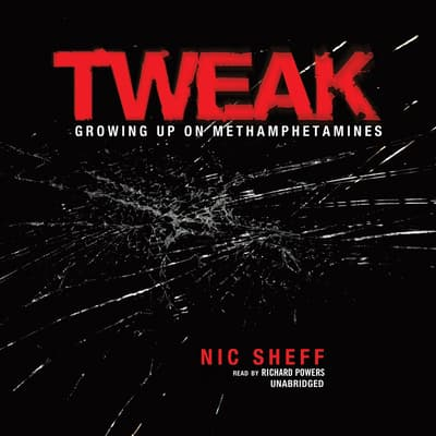 Tweak by Nic Sheff audiobook