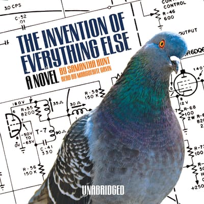 The Invention of Everything Else by Samantha Hunt audiobook
