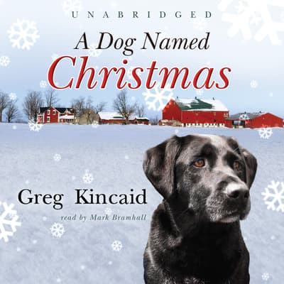 A Dog Named Christmas by Greg Kincaid audiobook