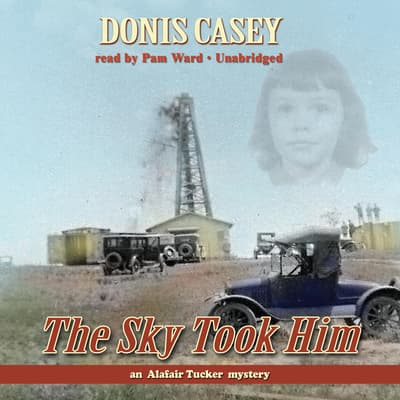 The Sky Took Him by Donis Casey audiobook