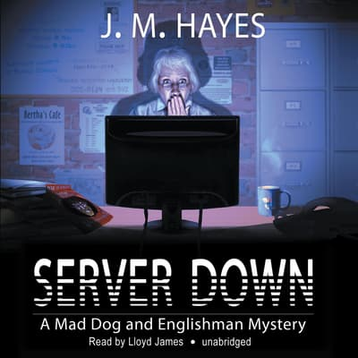 Server Down by J. M. Hayes audiobook