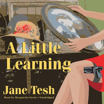 A Little Learning by Jane Tesh audiobook