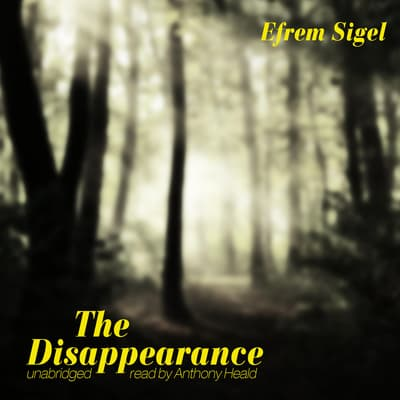 The Disappearance by Efrem Sigel audiobook