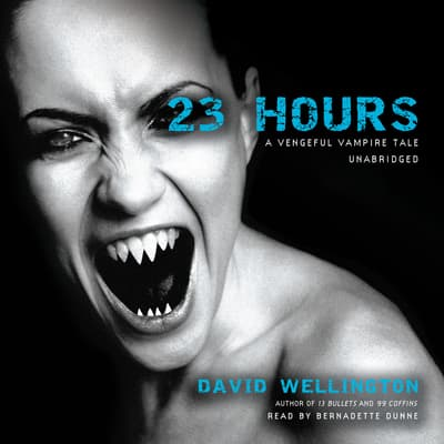 23 Hours by David Wellington audiobook