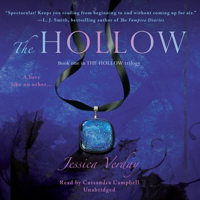The Hollow by Jessica Verday audiobook