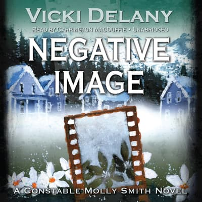 Negative Image by Vicki Delany audiobook