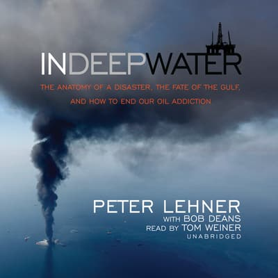 In Deep Water by Peter Lehner audiobook