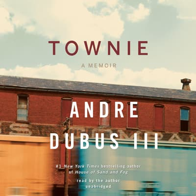 Townie by Andre Dubus audiobook