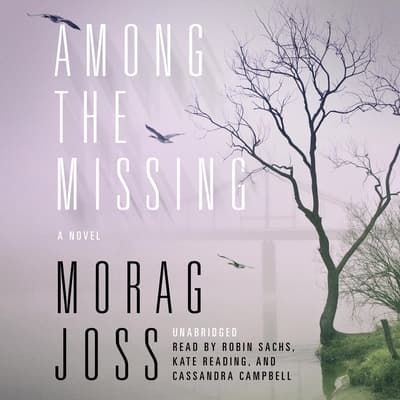 Among the Missing by Morag Joss audiobook