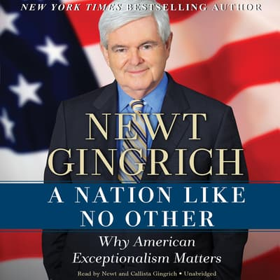 A Nation like No Other by Newt Gingrich audiobook