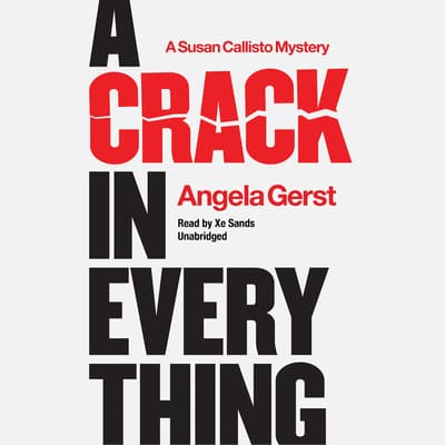 A Crack in Everything by Angela Gerst audiobook