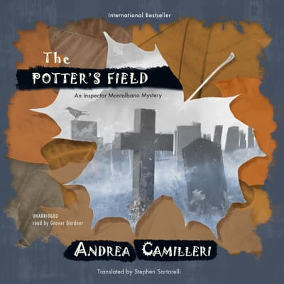 The Potter's Field by Andrea Camilleri audiobook