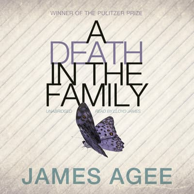A Death in the Family by James Agee audiobook