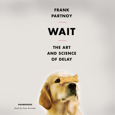 Wait by Frank Partnoy audiobook