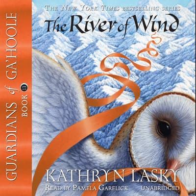 The River of Wind by Kathryn Lasky audiobook