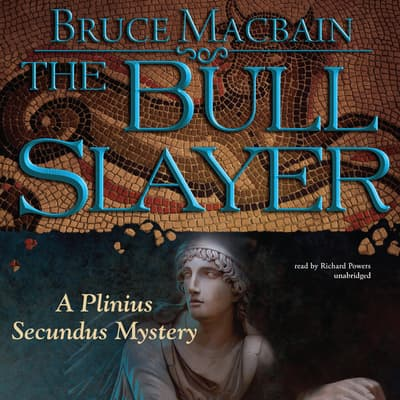 The Bull Slayer by Bruce Macbain audiobook