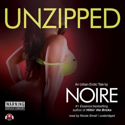 Unzipped by Noire  audiobook