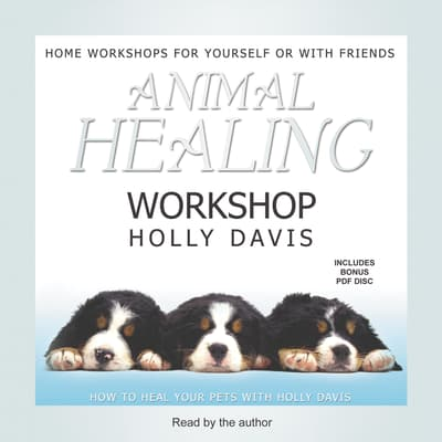 Animal Healing Workshop by Holly Davis audiobook