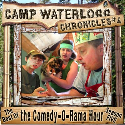 The Camp Waterlogg Chronicles 4 by Joe Bevilacqua audiobook
