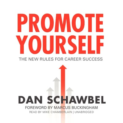 Promote Yourself by Dan Schawbel audiobook