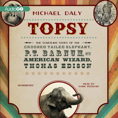 Topsy by Michael Daly audiobook
