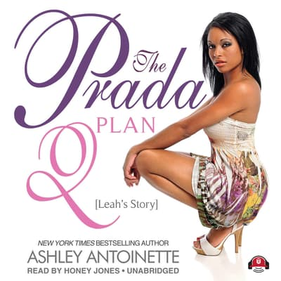 The Prada Plan 2 by Ashley Antoinette audiobook
