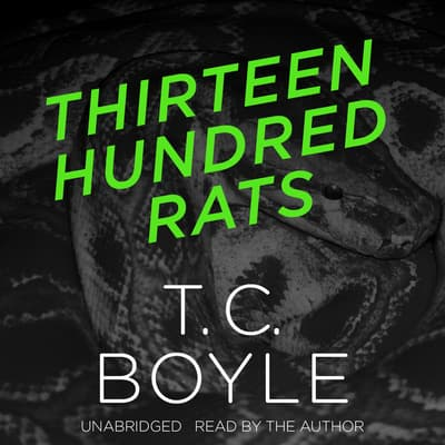 Thirteen Hundred Rats by T. C. Boyle audiobook