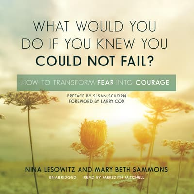 What Would You Do If You Knew You Could Not Fail? by Nina Lesowitz audiobook