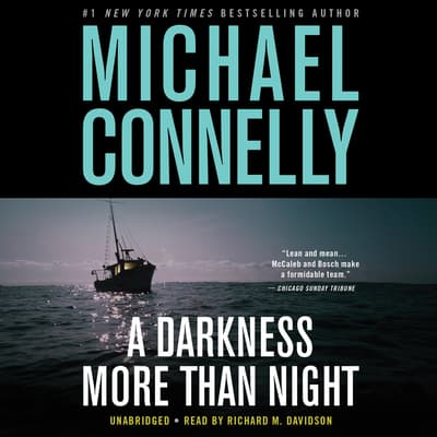 A Darkness More Than Night by Michael Connelly audiobook