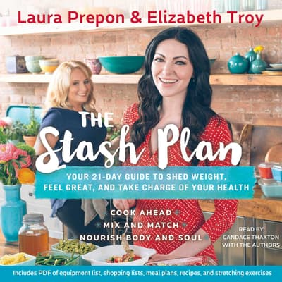 The Stash Plan by Laura Prepon audiobook