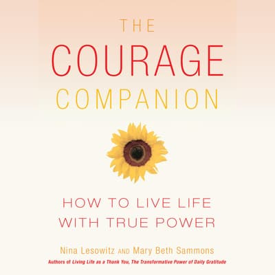 The Courage Companion by Nina Lesowitz audiobook