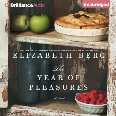 The Year of Pleasures by Elizabeth Berg audiobook