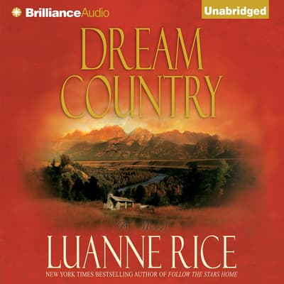 Dream Country by Luanne Rice audiobook
