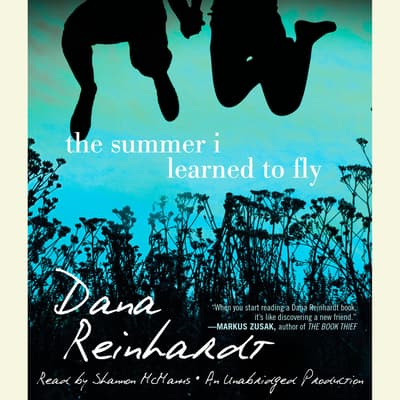 The Summer I Learned to Fly by Dana Reinhardt audiobook
