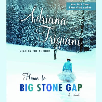 Home to Big Stone Gap by Adriana Trigiani audiobook