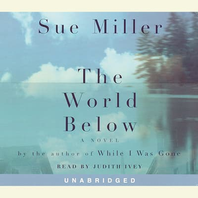 The World Below by Sue Miller audiobook