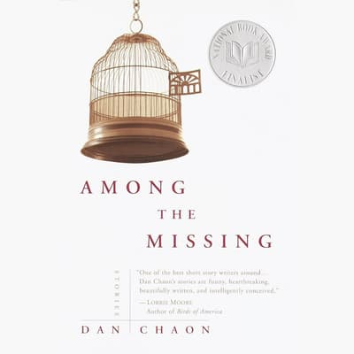 Among the Missing by Dan Chaon audiobook