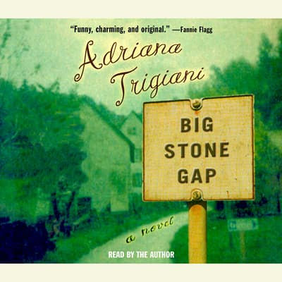 Big Stone Gap by Adriana Trigiani audiobook
