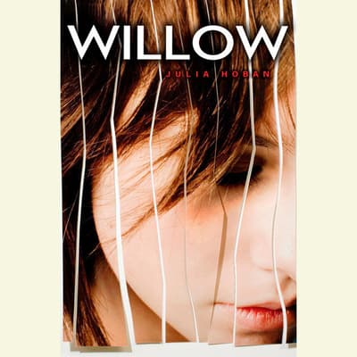 Willow by Julia Hoban audiobook