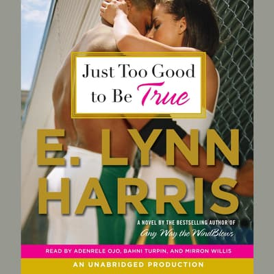 Just Too Good to Be True by E. Lynn Harris audiobook