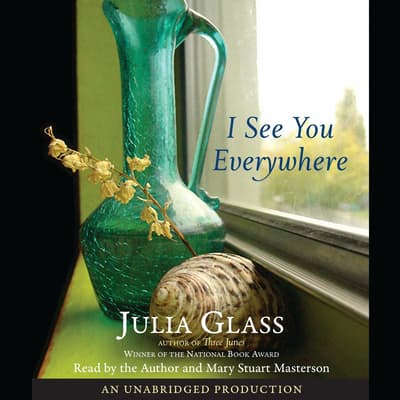 I See You Everywhere by Julia Glass audiobook